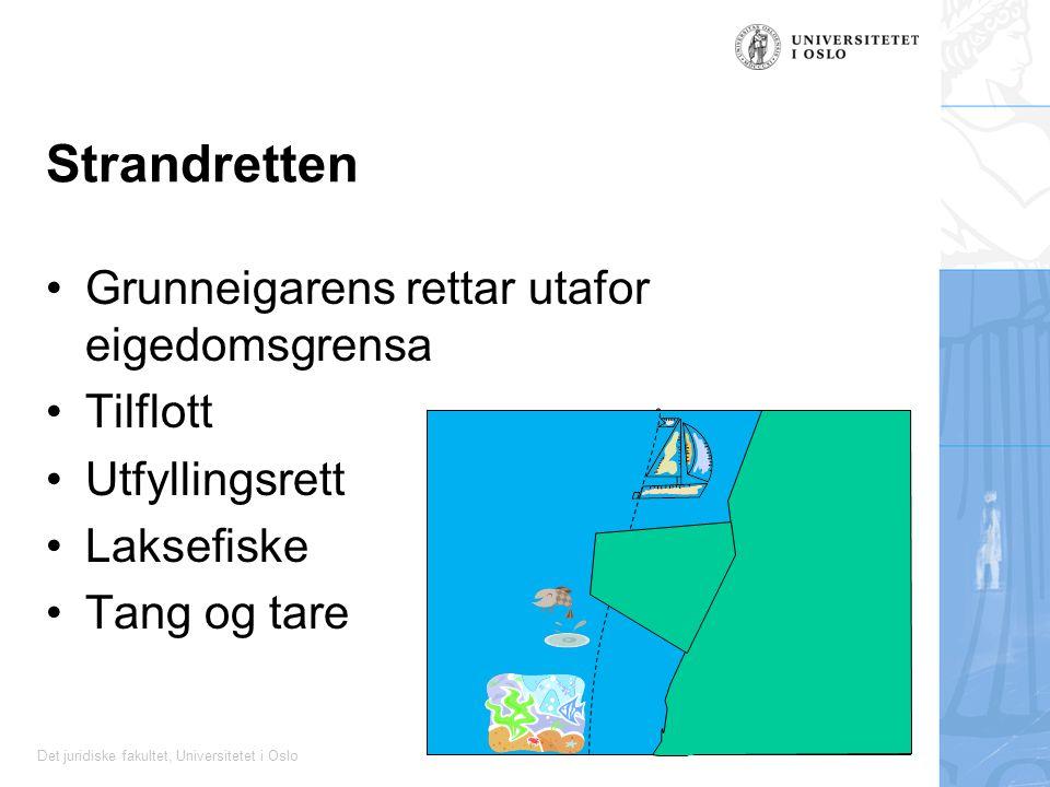 Strandretten Grunneigarens rettar utafor eigedomsgrensa Tilflott