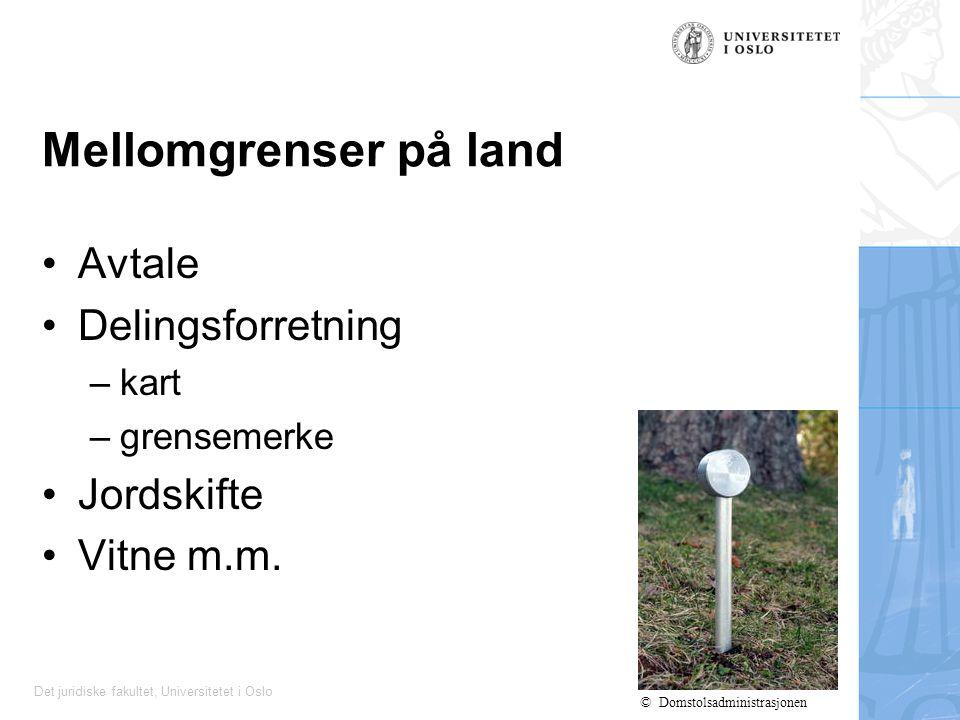 Mellomgrenser på land Avtale Delingsforretning Jordskifte Vitne m.m.