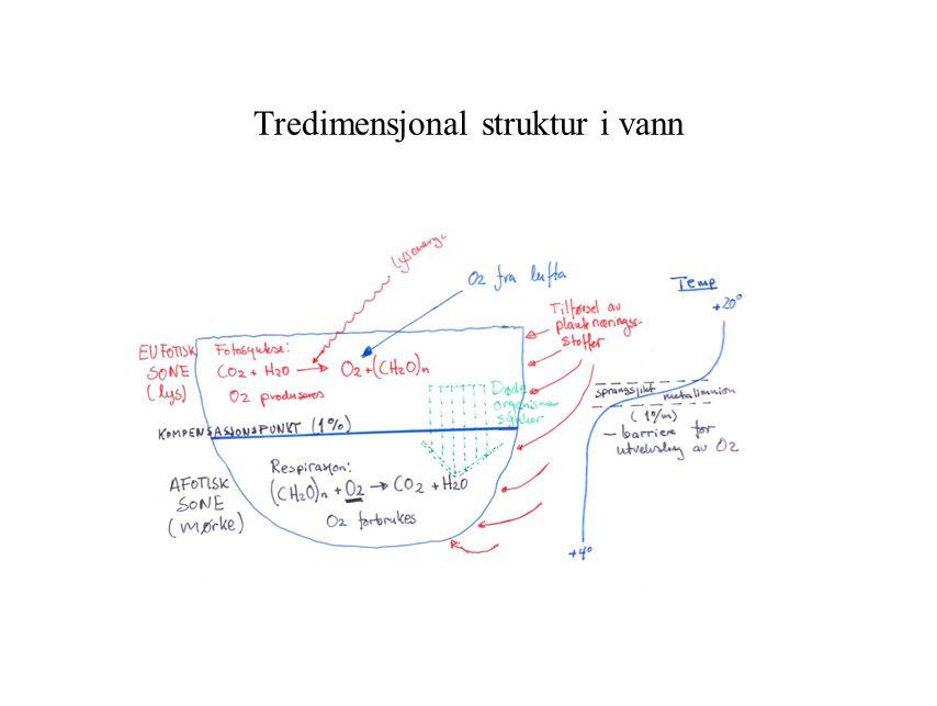 Tredimensjonal struktur i vann