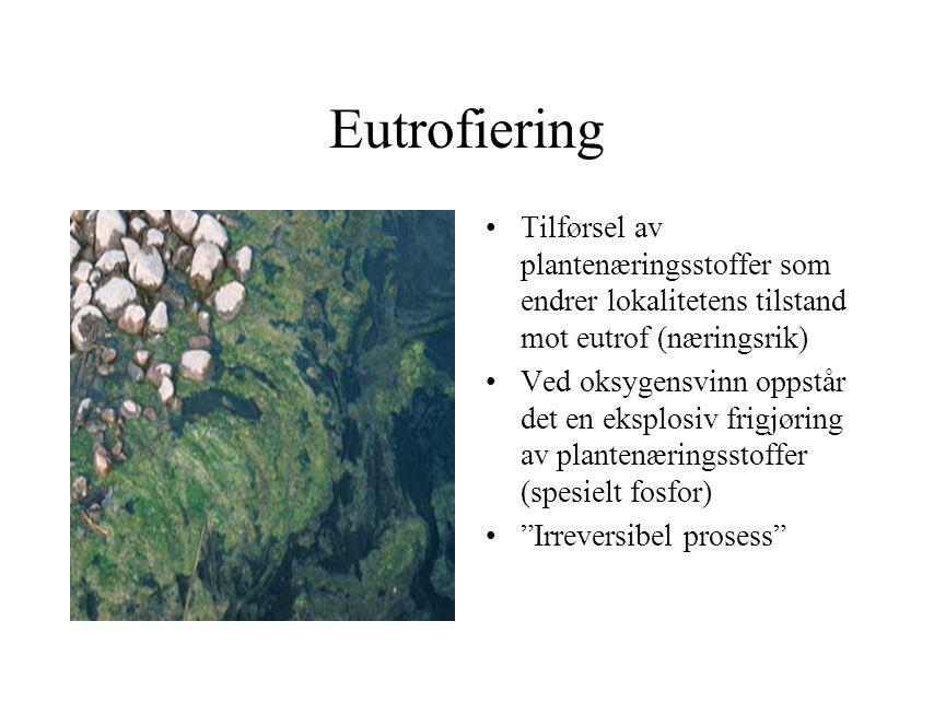 Eutrofiering Tilførsel av plantenæringsstoffer som endrer lokalitetens tilstand mot eutrof (næringsrik)