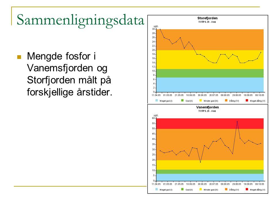 Sammenligningsdata Mengde fosfor i Vanemsfjorden og Storfjorden målt på forskjellige årstider.