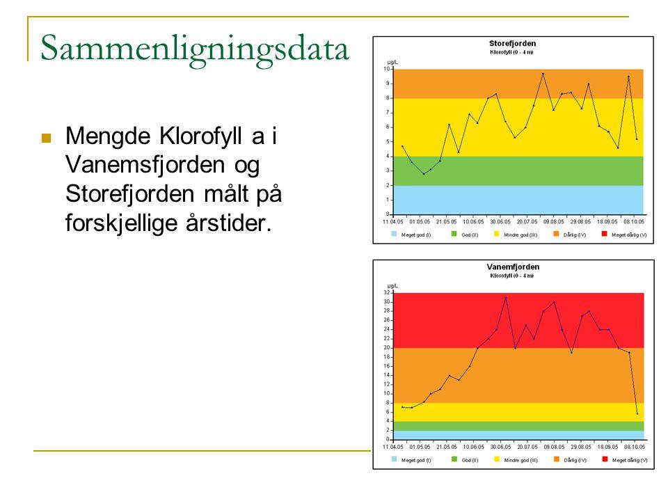 Sammenligningsdata Mengde Klorofyll a i Vanemsfjorden og Storefjorden målt på forskjellige årstider.