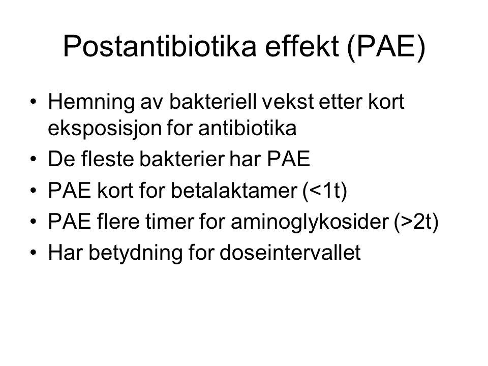 Postantibiotika effekt (PAE)