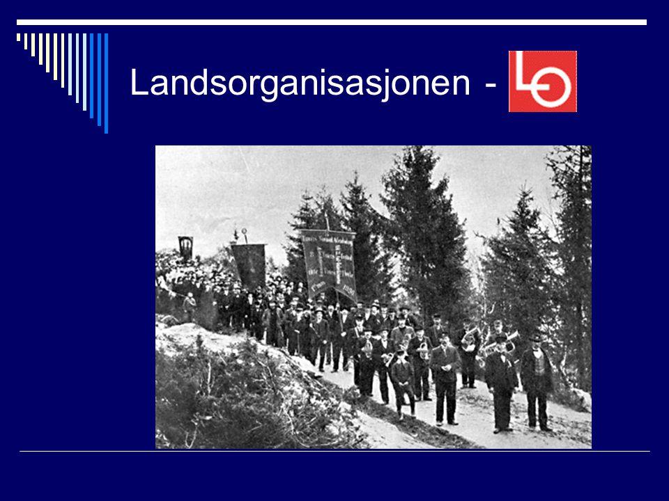 Landsorganisasjonen -