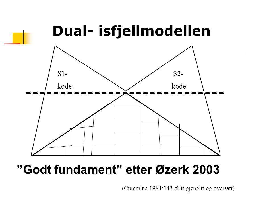 Dual- isfjellmodellen
