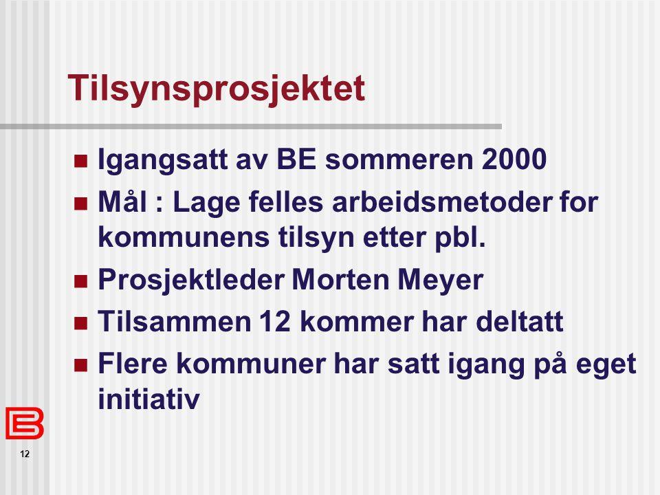 Tilsynsprosjektet Igangsatt av BE sommeren 2000