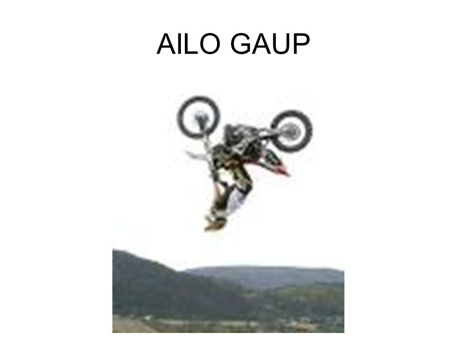 AILO GAUP