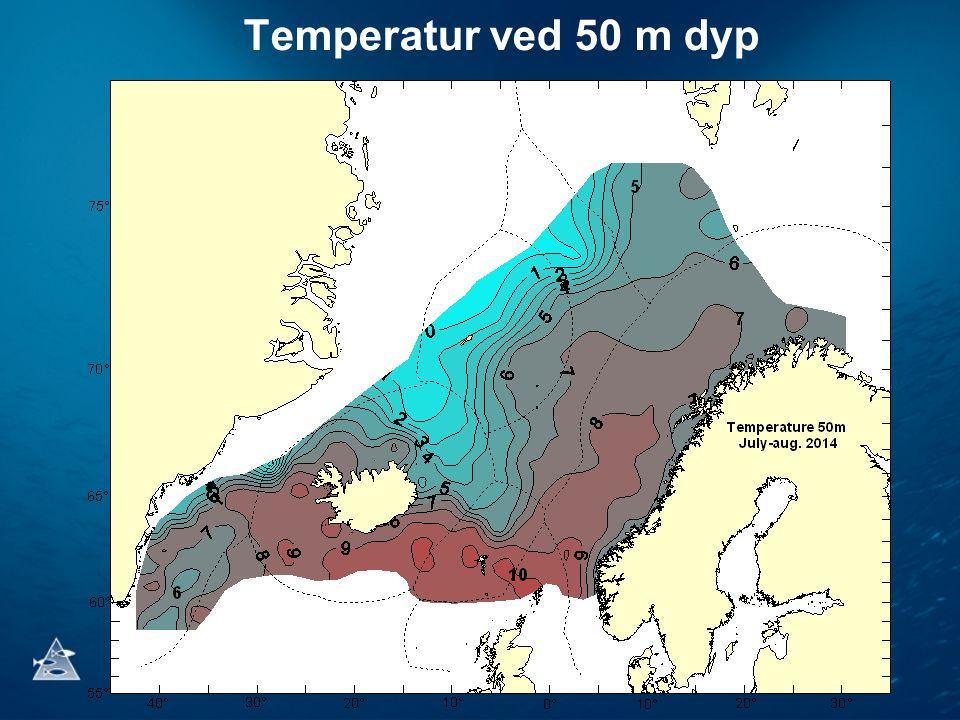 Temperatur ved 50 m dyp