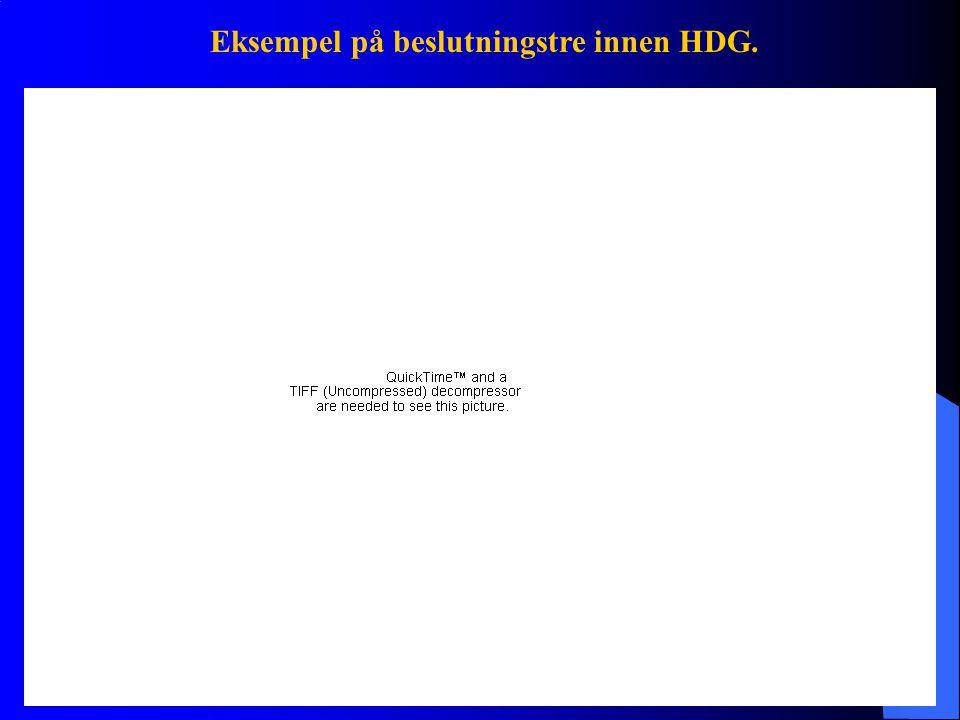 Eksempel på beslutningstre innen HDG.