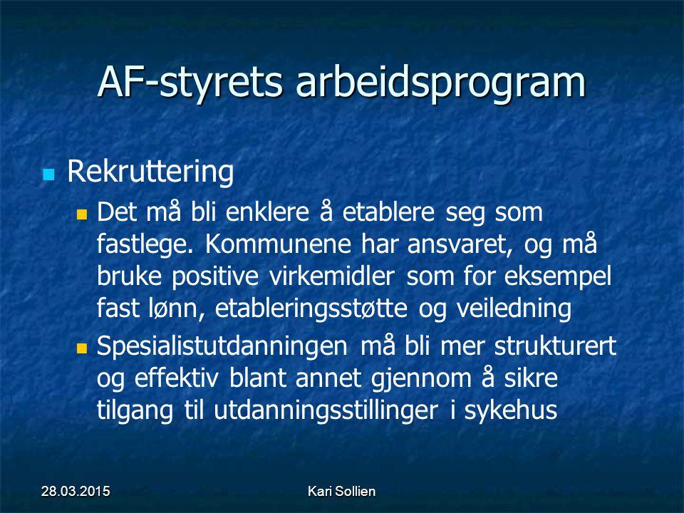 AF-styrets arbeidsprogram