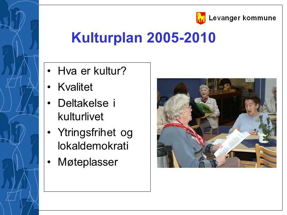 Kulturplan 2005-2010 Hva er kultur Kvalitet Deltakelse i kulturlivet