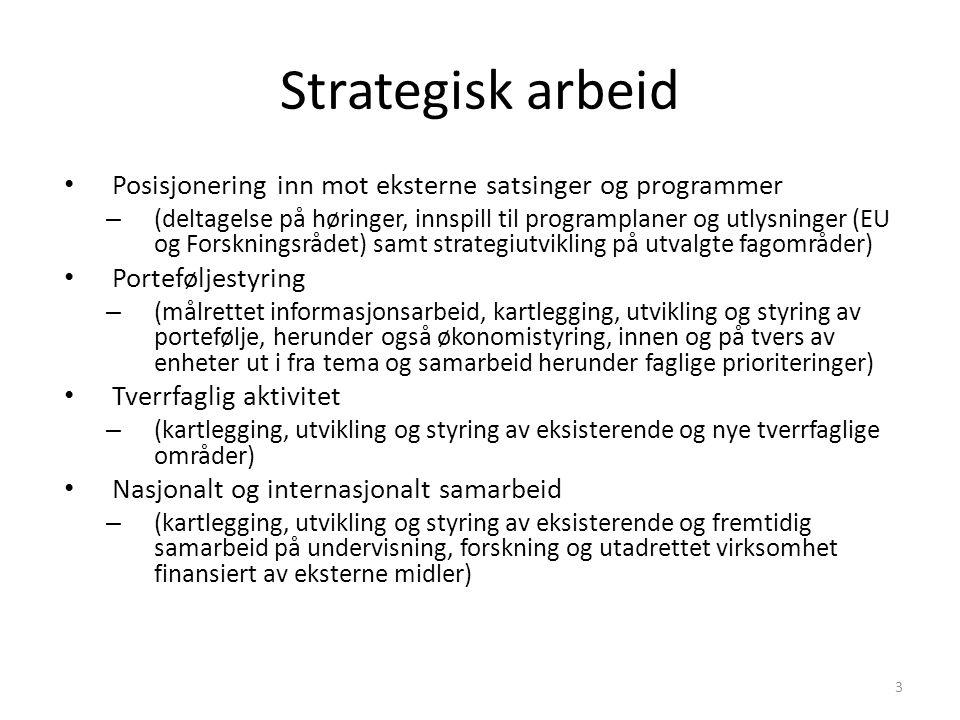 Strategisk arbeid Posisjonering inn mot eksterne satsinger og programmer.