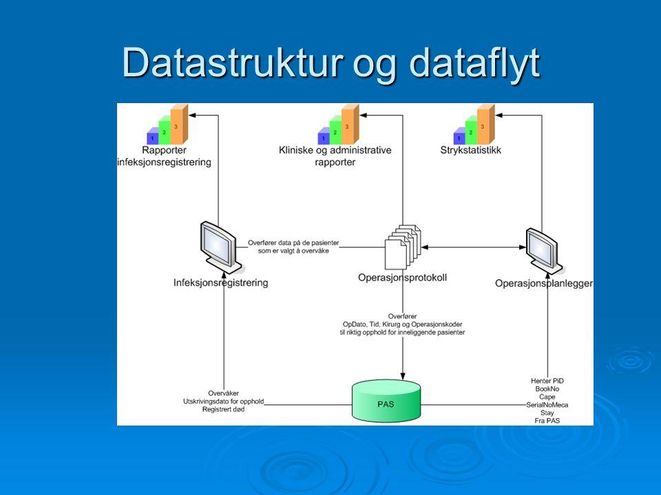 Datastruktur og dataflyt