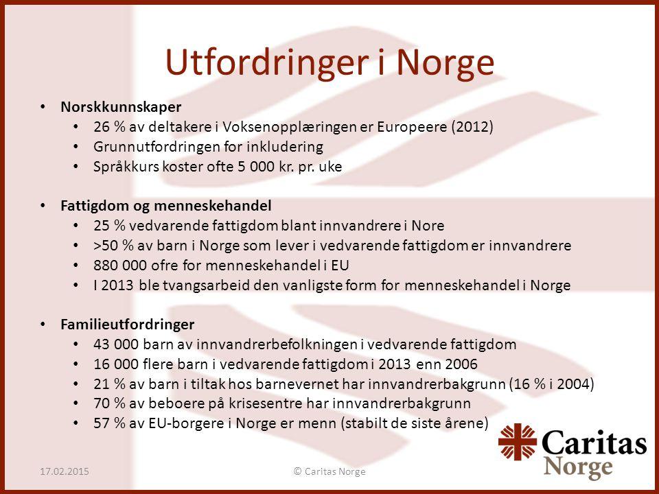 Utfordringer i Norge Norskkunnskaper