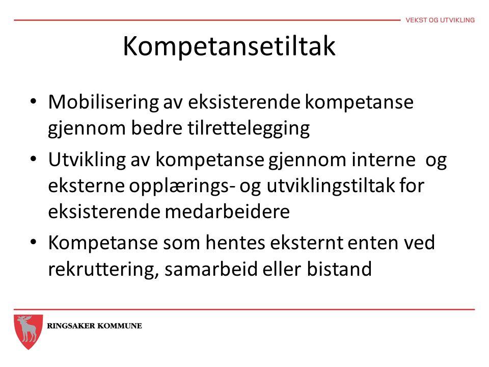 Kompetansetiltak Mobilisering av eksisterende kompetanse gjennom bedre tilrettelegging.