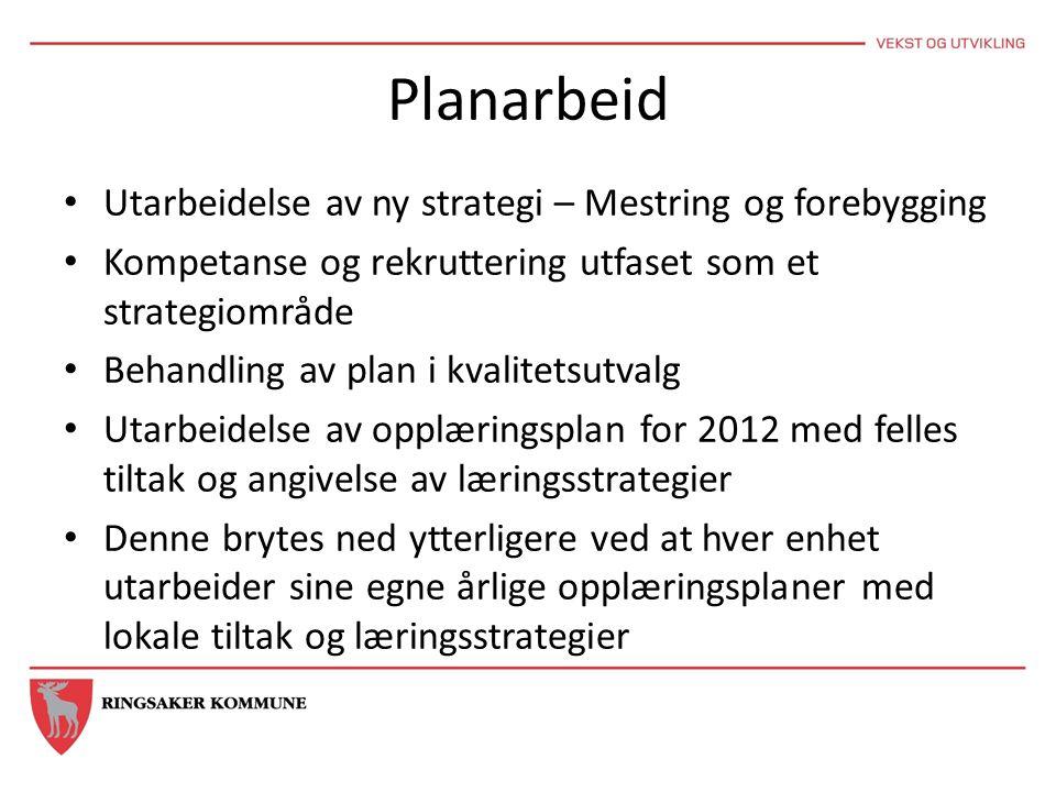 Planarbeid Utarbeidelse av ny strategi – Mestring og forebygging