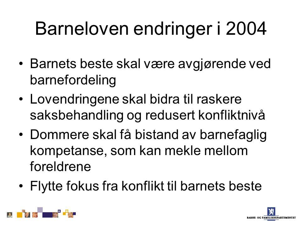 Barneloven endringer i 2004