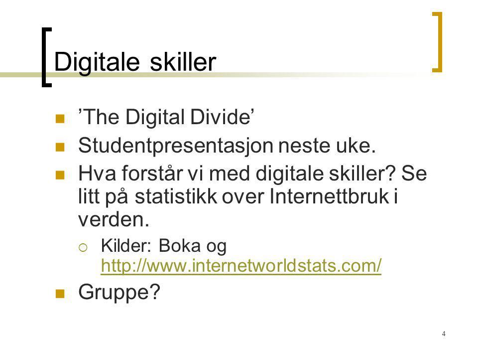 Digitale skiller 'The Digital Divide' Studentpresentasjon neste uke.