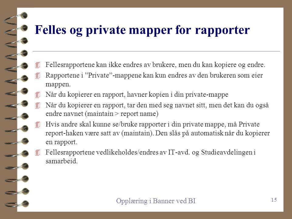 Felles og private mapper for rapporter