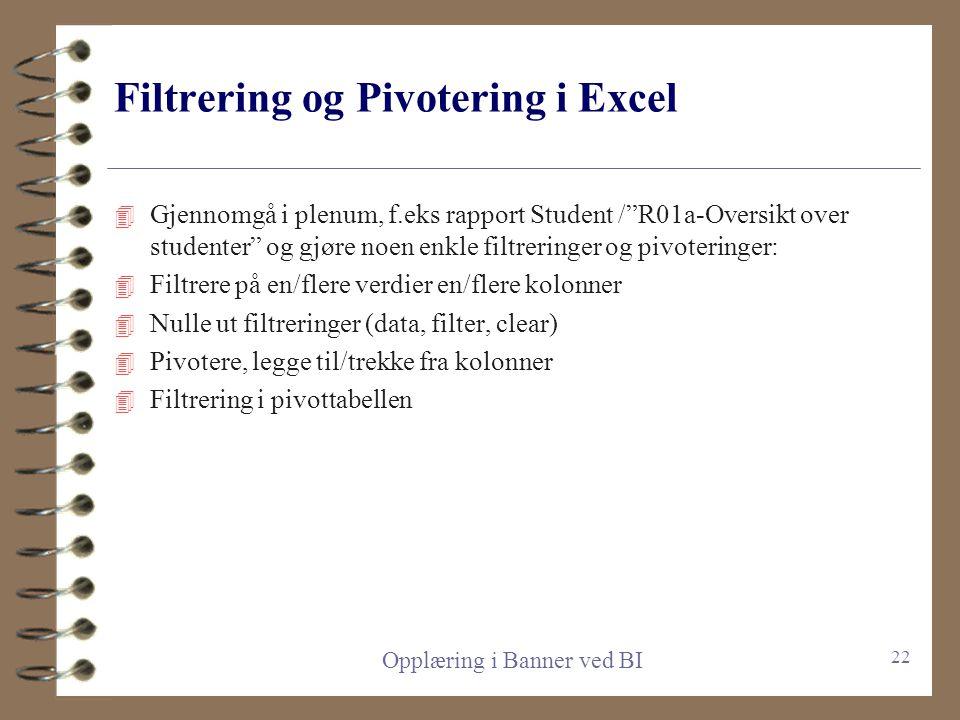 Filtrering og Pivotering i Excel