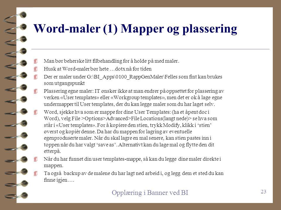 Word-maler (1) Mapper og plassering