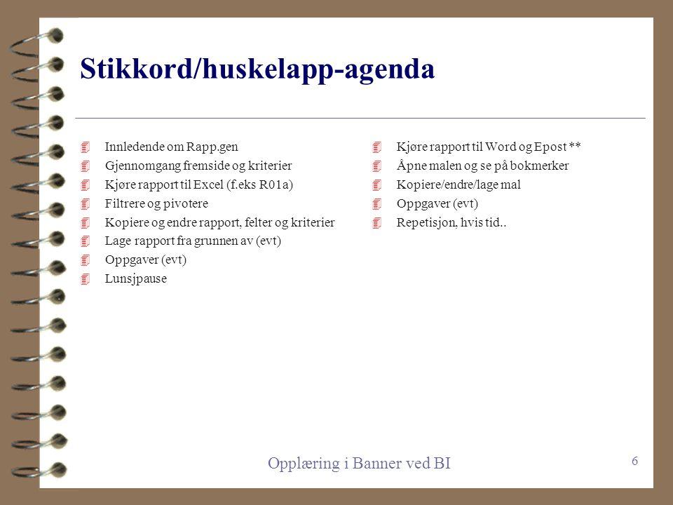 Stikkord/huskelapp-agenda