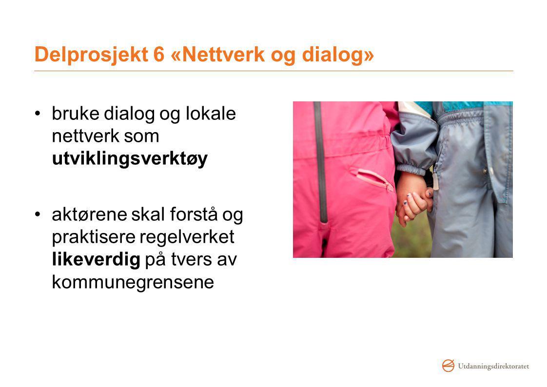 Delprosjekt 6 «Nettverk og dialog»