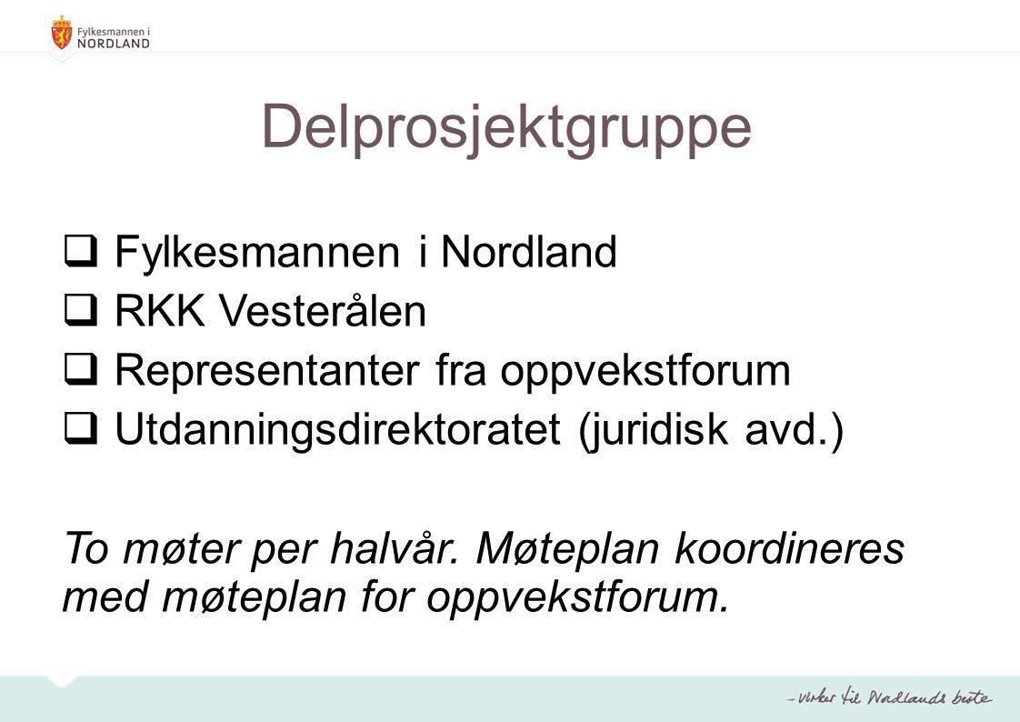 Delprosjektgruppe Fylkesmannen i Nordland RKK Vesterålen