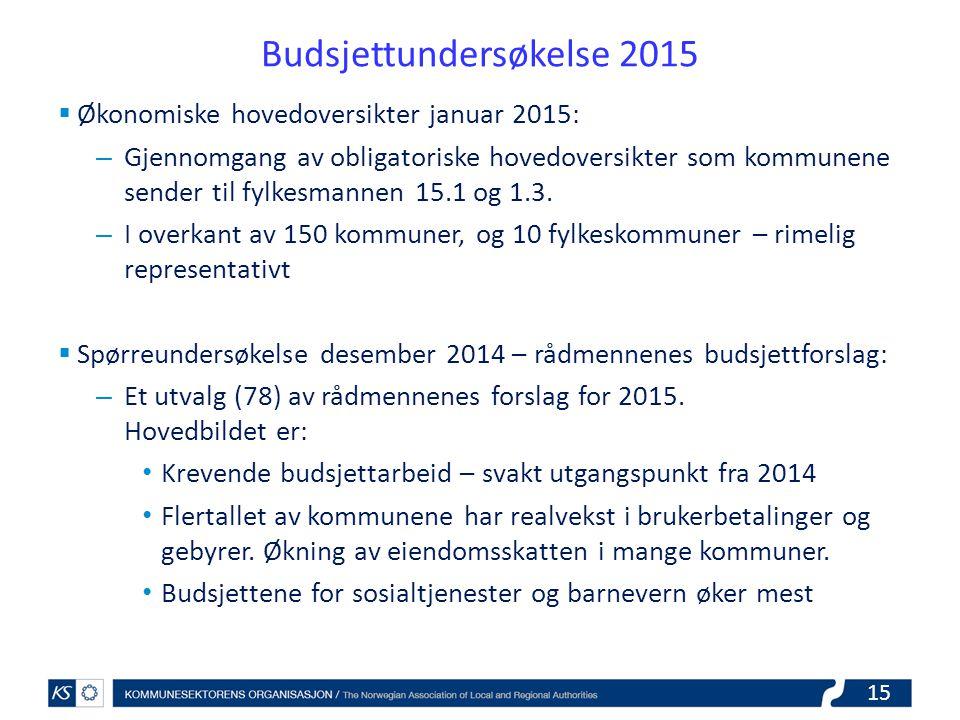 Budsjettundersøkelse 2015