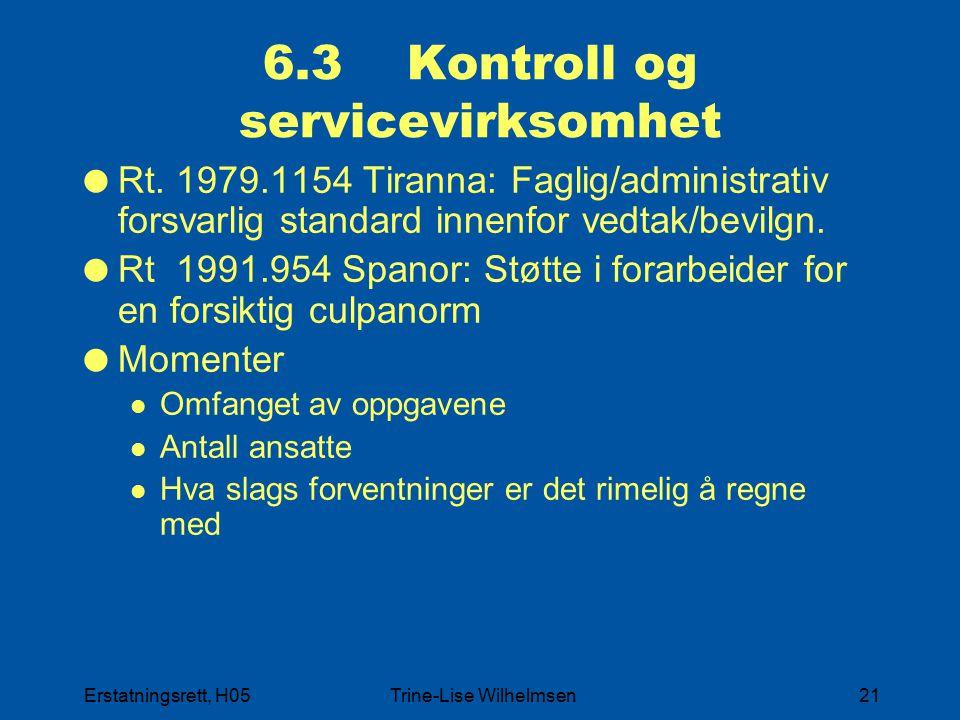 6.3 Kontroll og servicevirksomhet
