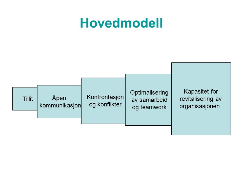 Hovedmodell Kapasitet for revitalisering av Optimalisering