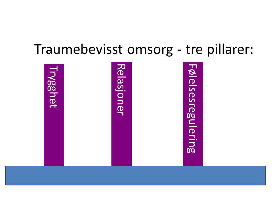 Traumebevisst omsorg - tre pillarer: