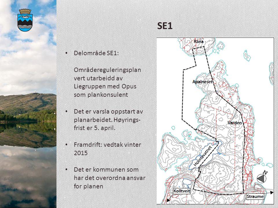 SE1 Delområde SE1: Områdereguleringsplan vert utarbeidd av Liegruppen med Opus som plankonsulent.