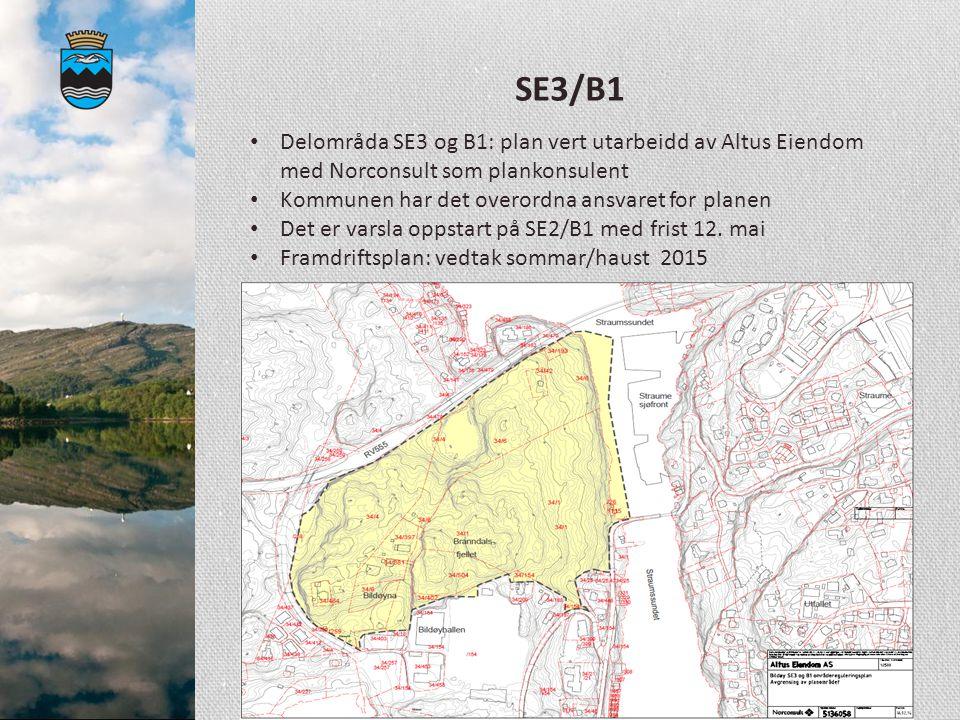 SE3/B1 Delområda SE3 og B1: plan vert utarbeidd av Altus Eiendom med Norconsult som plankonsulent. Kommunen har det overordna ansvaret for planen.