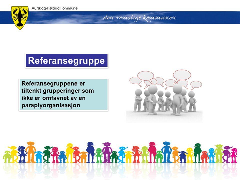 Referansegruppe Referansegruppene er tiltenkt grupperinger som ikke er omfavnet av en paraplyorganisasjon.