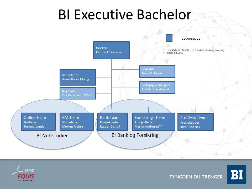 BI Executive Bachelor BI Nettstudier BI Bank og Forsikring Online-team