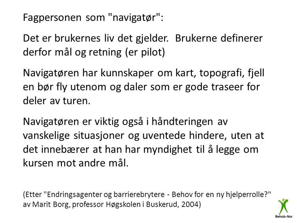 Fagpersonen som navigatør :