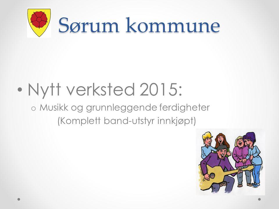 Sørum kommune Nytt verksted 2015: Musikk og grunnleggende ferdigheter