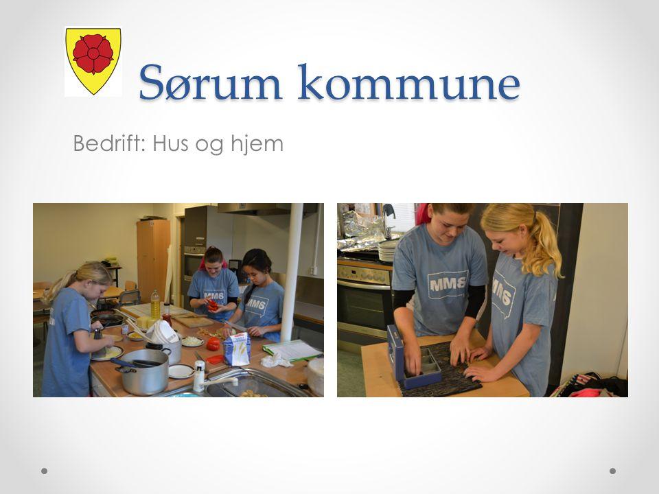 Sørum kommune Bedrift: Hus og hjem