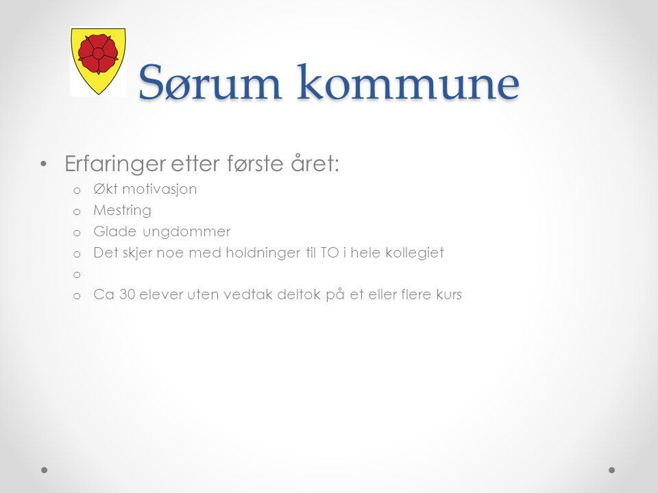 Sørum kommune Erfaringer etter første året: Økt motivasjon Mestring