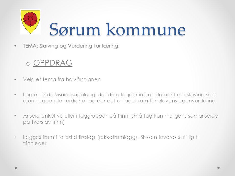 Sørum kommune OPPDRAG TEMA: Skriving og Vurdering for læring: