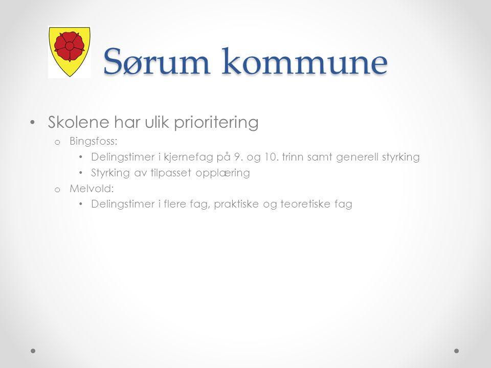 Sørum kommune Skolene har ulik prioritering Bingsfoss: