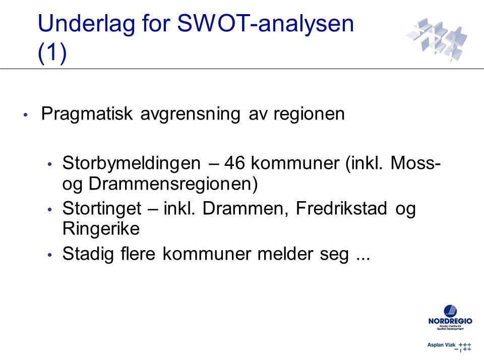 Underlag for SWOT-analysen (1)