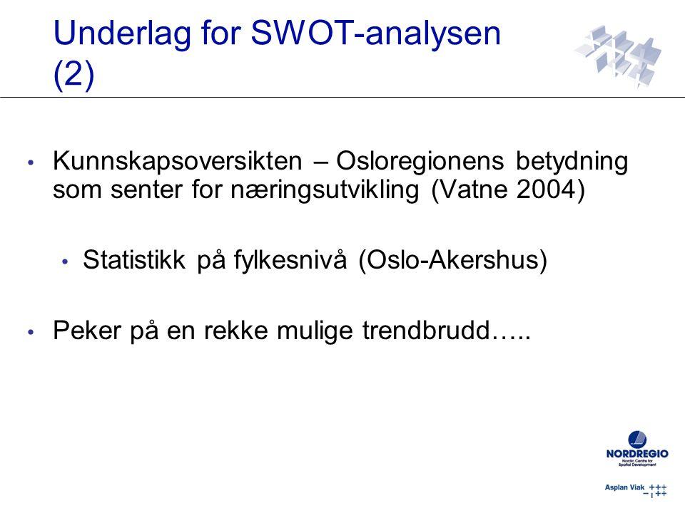 Underlag for SWOT-analysen (2)