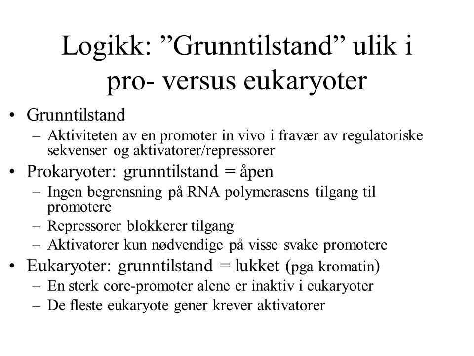 Logikk: Grunntilstand ulik i pro- versus eukaryoter