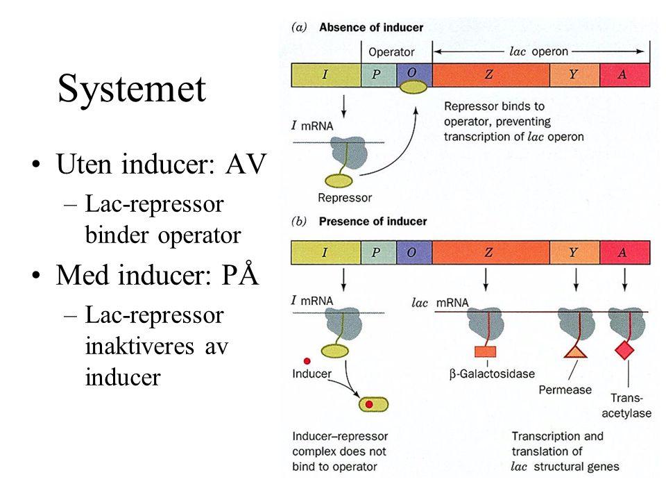 Systemet Uten inducer: AV Med inducer: PÅ