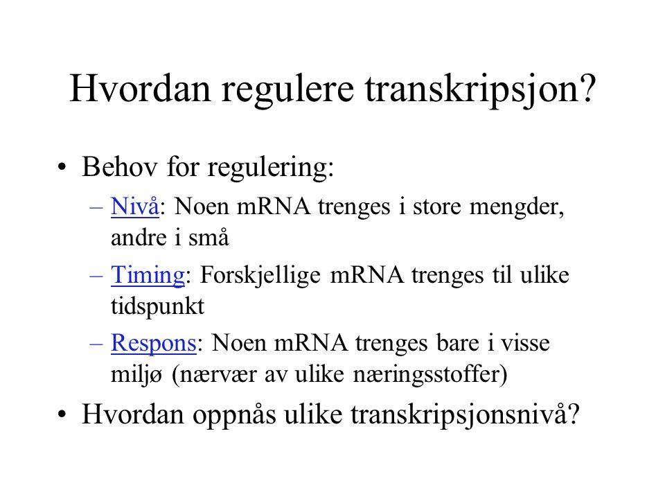 Hvordan regulere transkripsjon