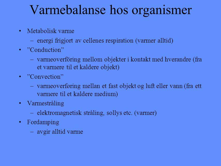 Varmebalanse hos organismer