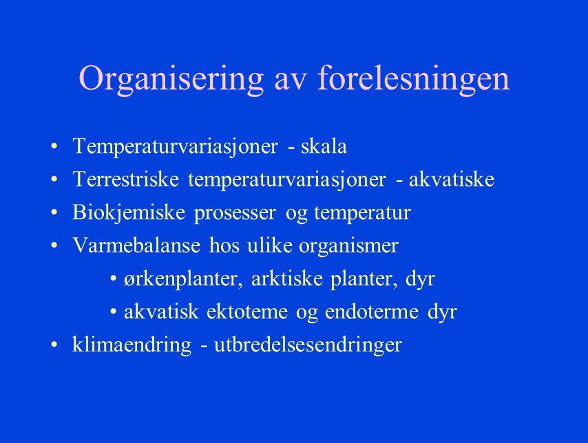 Organisering av forelesningen