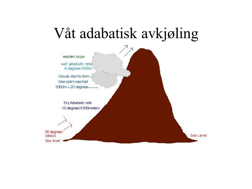 Våt adabatisk avkjøling